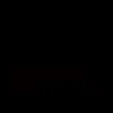 Mark Salzburg Logo